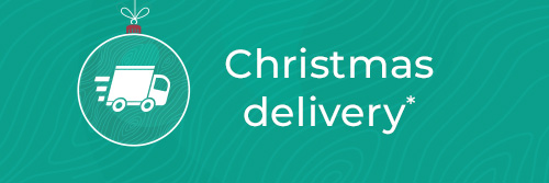 Christmas Delivery