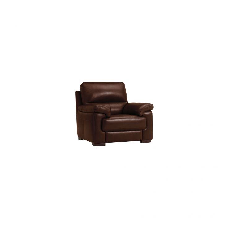 Vision Armchair in Brown Leather